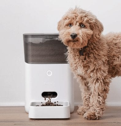 Fluffy dog next to a PetNet Smart Feeder