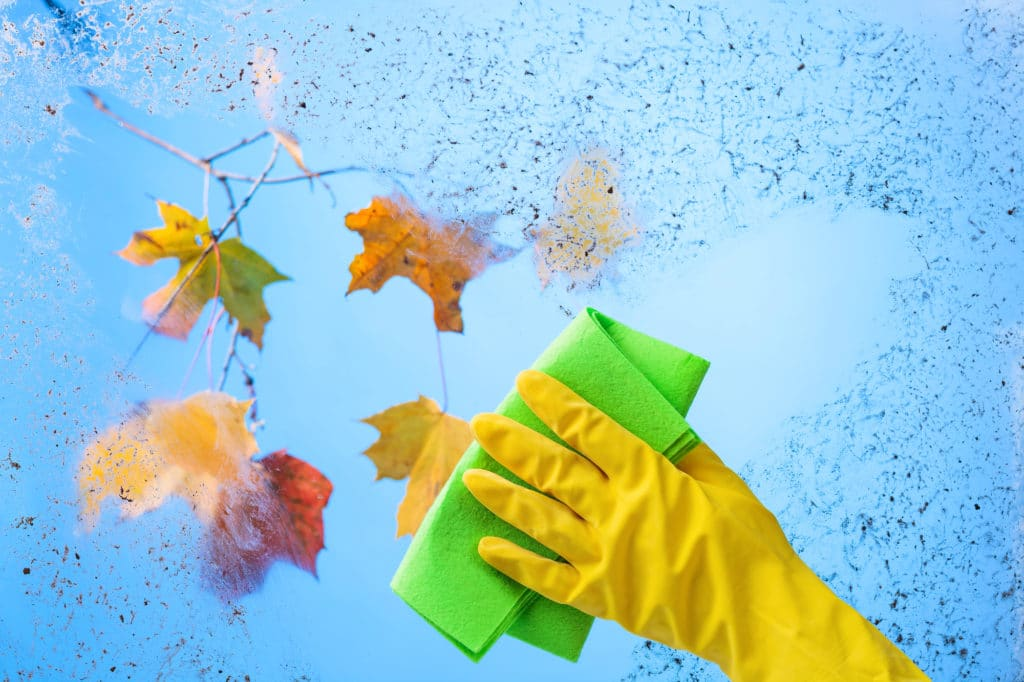 Hand in yellow rubber glove with napkin. Blue sky and colorful maple leaves on a branch behind dirty glass. Conceptual image on the theme of cleanliness and hygiene.